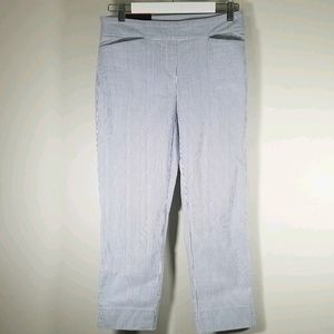 Hilary Radley Blue Stripped Pants NWT